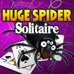 Riesiges Spider Solitär